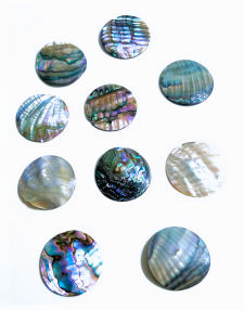 "1.5"" Abalone Focal Point (No Holes)"