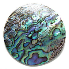 "2"" Abalone Focal Point (No Holes)"