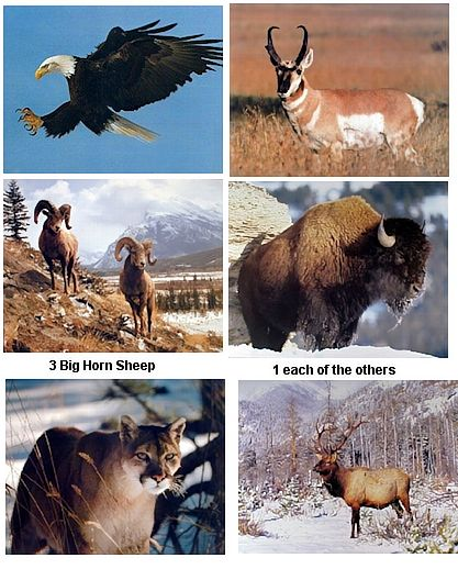 north American wildlife posters wholesale
