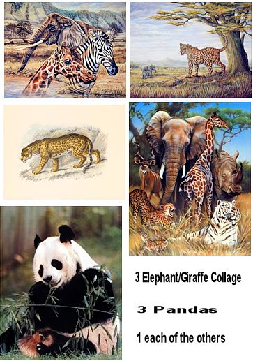 safari animal posters wholesale