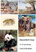 "9 Safari Animals 16x20"" Art Prints - One price for all!"