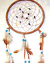 "7"" Brown Seashell Dream Catcher"
