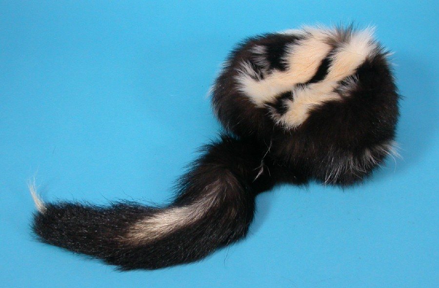 Native Crafts Wholesale Now Open To The Public Skunk Hat With