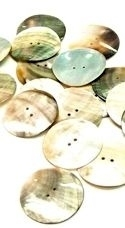 "1.5"" Abalone 2-Hole Button"