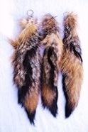 Gray Fox Tail with Ball Chain