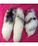 Arctic Marble Fox Tails