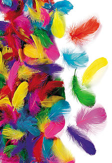 600 Brightly Colored Feather Assortment