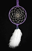 "5"" Dream Catcher with Ostrich Plumes"